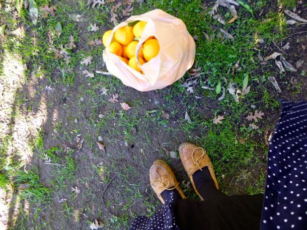 citrus feet