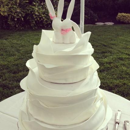 Fallon And Paul's Cake